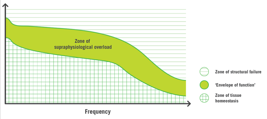 The 'envelope of function' (according to Dye, 2005): increase in activities (both frequency and intensity) leads to tissue loading outside the zone of physiological homeostasis